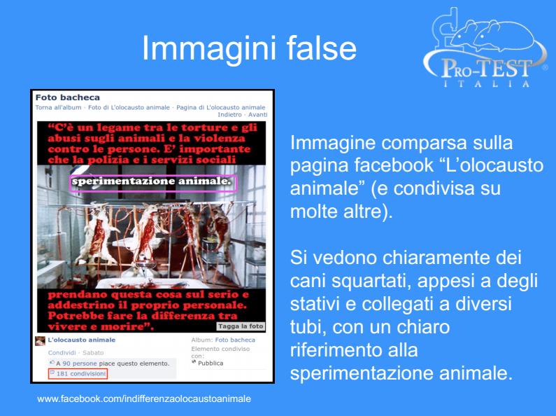 Per gentile concessione di Pro-Test Italia, pubblichiamo una raccolta di immagini che testimoniano che ciò che circola su internet per attaccare la sperimentazione animale spesso, in realtà, è falso o decontestualizzato. Le foto sono state utilizzate nel corso della conferenza che lo scorso 14 gennaio si è svolta in Senato per dare voce a ricercatori e scienziati. Questa arriva dalla pagina Facebook «L'olocausto animale».