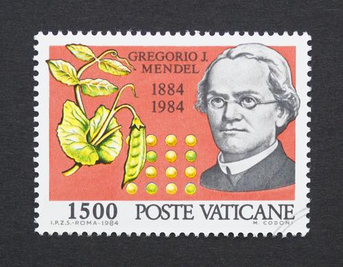 mendel-gregor-francobollo-shutterstock_225005596