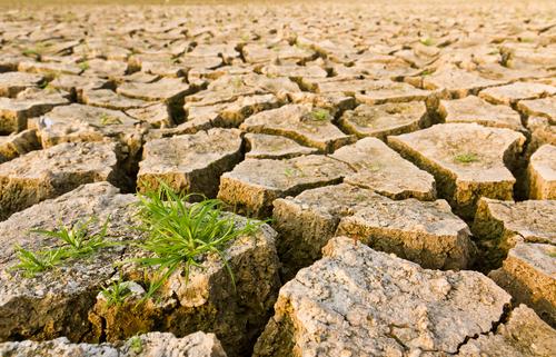 siccita-cambiamenti-climatici-shutterstock_77506255