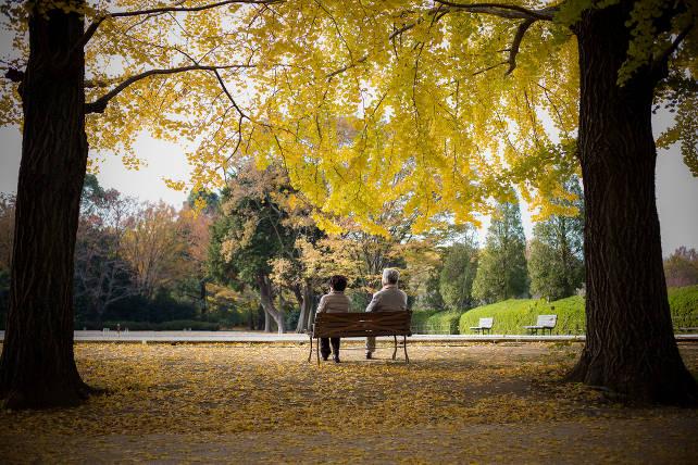 anziani-parco-shutterstock_256142389