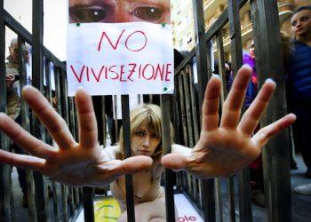 L'attrice Loredana Cannata seminuda in gabbia a Napoli per un'iniziativa della lista Ingroia contro la vivisezione, 16 febbraio 2013. ANSA / CIRO FUSCO