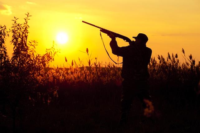 cacciatore-caccia-shutterstock_261307985