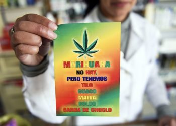 In this June 28, 2016 photo, an employee of the Erosa pharmacy shows a flyer that announces that in their pharmacy there is no marijuana for sale but they have alternate native herbs known for their medical effects, in downtown Montevideo, Uruguay. The government wants to start selling marijuana at pharmacies in the coming weeks, but so far only 50 out of 1,200 pharmacies are registered, stoking a debate over how the drug should be distributed. (AP Photo/Matilde Campodonico)