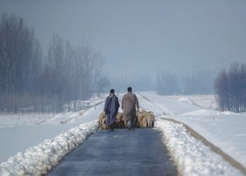 Kashmiri shepherds walk with their heard of sheep on a snow covered road near Hussainpora 55 kilometers (34 miles) south of Srinagar, Indian controlled Kashmir, Monday, Jan. 16, 2017. The only all weather road link that connects the Kashmir valley to the rest of India was closed Monday due to heavy snowfall. (AP Photo/Dar Yasin)