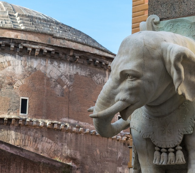 elefante bernini pantheon