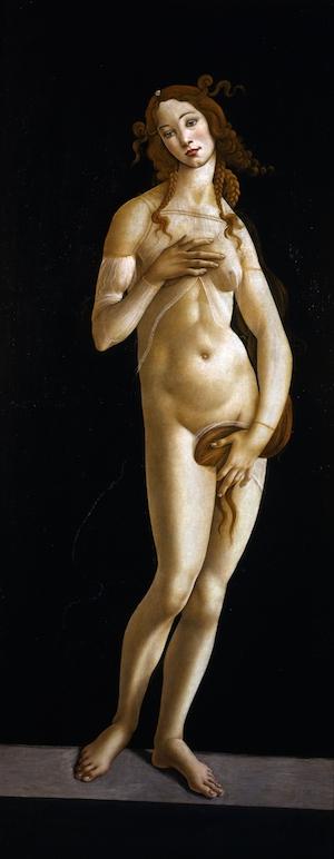 Venere, 1490 circa, Musei Reali Torino