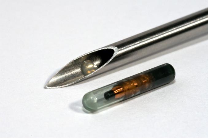 Il microchip impiantato nella mano Mark Gasson - Foto Paul Hughes