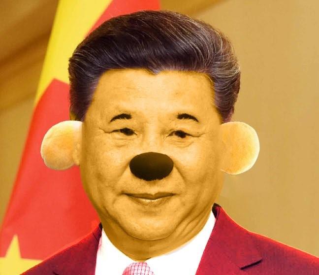 cina xi jinping winnie the pooh