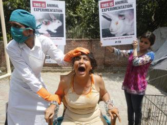 Animalisti in protesta contro la sperimentazione animale
