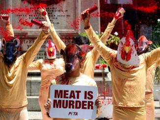 Manifestazione per il veganesimo contro la carne