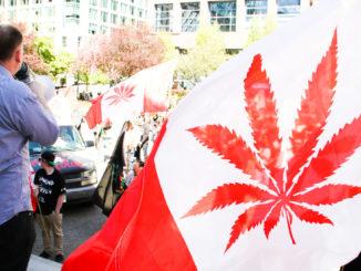Marijuana, la marcia globale a Vancouver, in Canada, nel 2013
