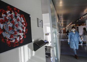 I ricercatori di Reithera lavorano alla realizzazione di un vaccino per il Covid-19