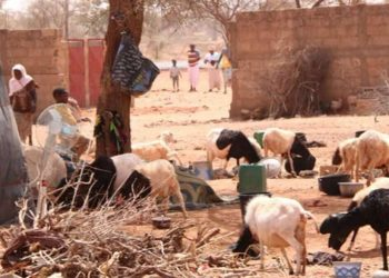 Cristiani perseguitati del Niger rifugiati in Burkina Faso