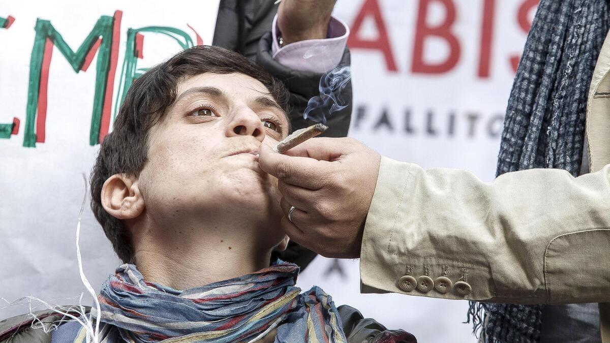 Superato il quorum di 500 mila firme per il referendum sulla cannabis legale (foto Ansa)