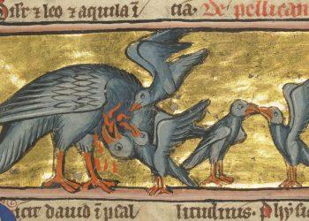 Pellicano che nutre i suoi piccoli in una miniatura medievale